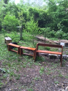 Urban forestry Benches installed